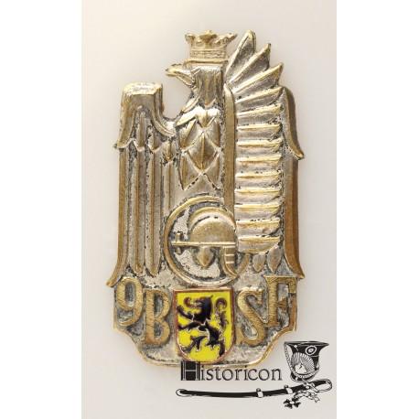 9 Batalion Strzelców Flandryjskich