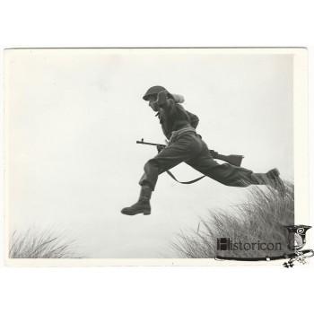 Zdjęcie żołnierza Samodzielnej Kompanii Commando